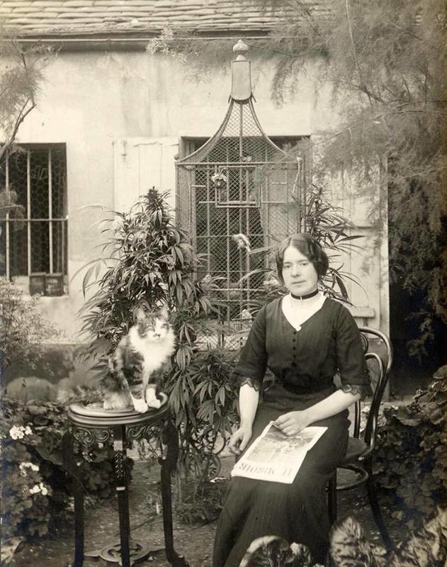 1910 photo of woman with cannabis plant