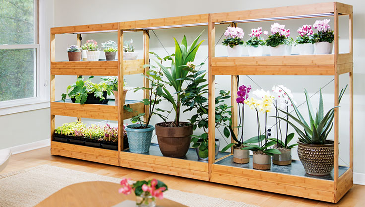 wood decor grow light