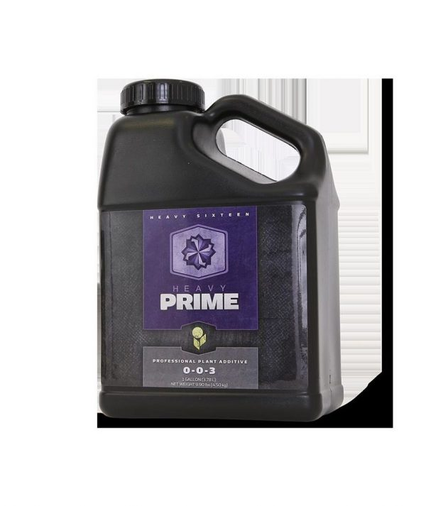 Heavy 16 Prime, 8 oz. (250 mL)