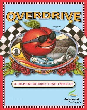 AN Overdrive, 250 mL