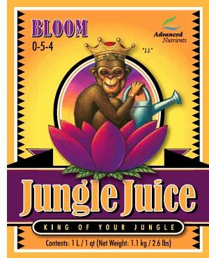 AN Jungle Juice Bloom, 1 L
