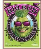 AN Big Bud, 250 mL