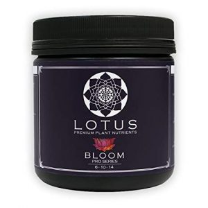 Lotus Pro – BLOOM, 16 oz.