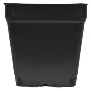 Kord Square Pot, 3.5″