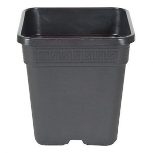 Fancy Square POT, 1/2 gal