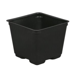 Kord Square Pot, 4″